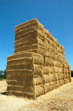 Straw Wall. A wall made of straw bundles Stock Images