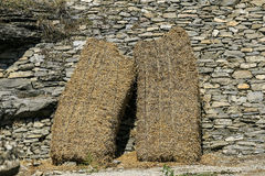 Straw in a wall of stones Stock Image