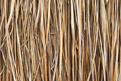 Straw that was built is a wall. Royalty Free Stock Photos