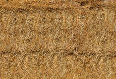 Straw was pressed into large bales lying on top of each other.Texture or background. Yellow straw is pressed into huge round bales .Texture or background stock images