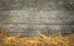 Straw and wheat on a rustic wooden background Stock Photos