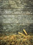 Straw and wheat on a rustic wooden background Stock Photography