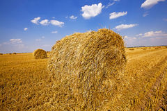 Straw stack Royalty Free Stock Images