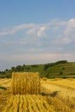 Strawbale на поле Стоковое Изображение RF