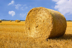 Strawbale on harvested field Stock Photo