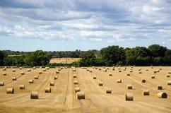 Strawbales redondos en un campo Imagenes de archivo