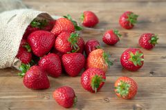 Strawbarries fotografia stock