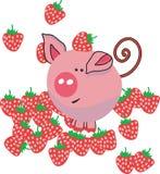 strawbeery χοίρων πεδίων Στοκ Εικόνες