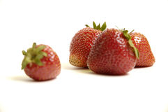 Strawberies fotografia de stock royalty free
