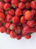 Strawberr sain sur le fond blanc Photo libre de droits