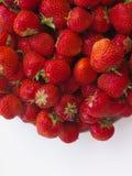 Strawberr sain sur le fond blanc Images libres de droits