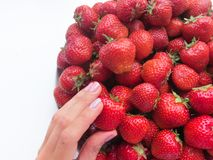 Strawberr sano su fondo bianco Fotografie Stock