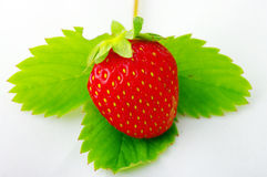 Strawberrie Stockbild