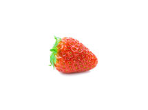 Strawberrie close up Royalty Free Stock Image