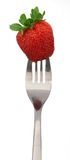 Strawberrie on a fork Stock Image