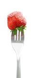 Strawberrie on a fork Royalty Free Stock Photos