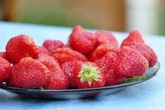 Strawberrie maduro en la placa Imagenes de archivo