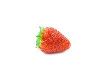 Strawberrie slut upp royaltyfri bild