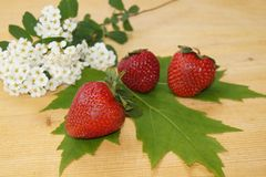 Strawberrie and spring flowers Stock Photo