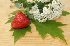 Strawberrie and spring flowers Royalty Free Stock Image