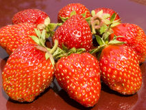 Strawberries. Are expounded on a red background royalty free stock photo