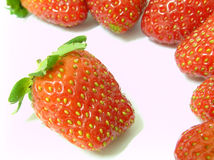 Strawberries. Fresh straberries on white background with the natural sunlight Stock Image
