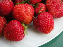 Strawberries. In white plate on green background Stock Image