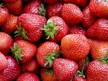 Strawberries Stock Photo
