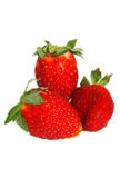 Strawberries. Nice colourful fruit got zoomed and focused closeup strawberry Royalty Free Stock Photos
