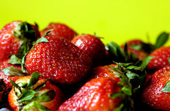 Strawberries. Close-up shot of strawberries against a yellow background. Brightly lit and appetizing Royalty Free Stock Photography