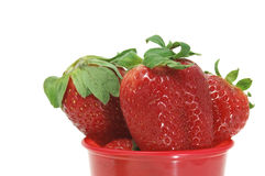 Strawberries. Close up of some strawberries in a bowl Stock Photography