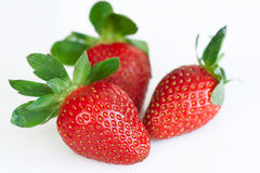 Strawberries. Some fresh and sweet strawberries isolated on white background Stock Image