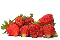 Free Strawberries Royalty Free Stock Photo - 14145985