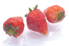 Strawberries. Sweet strawberries on a wet background Stock Photos