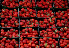 Strawberries Stock Images