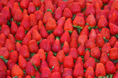 Strawberries. Background of fresh ripe strawberries for sale Royalty Free Stock Photos