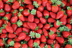 Free Strawberries Royalty Free Stock Photography - 15292037