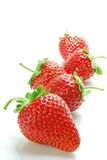 Strawberries. Isolated fruits. Strawberries on white background Royalty Free Stock Images
