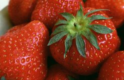 Strawberries. Plate of strawberries, close up royalty free stock images