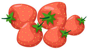 Strawberries. Illustration of isolated strawberries on white background Stock Photo