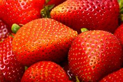 Strawberries. Fresh Juicy Strawberries Horizontal Photo. Macro Photo. Fruits Photo Collection Royalty Free Stock Image
