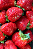 Strawberries. Red delicious strawberries for you make drinks Royalty Free Stock Images