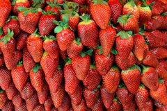 Strawberries. Closeup of bunch of fresh strawberries Royalty Free Stock Photography