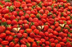 strawberries Στοκ Εικόνες
