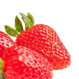 Strawberries. Some fresh strawberries isolated on white background stock images