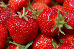 Strawberries. A group of fresh, red strawberries Royalty Free Stock Photography