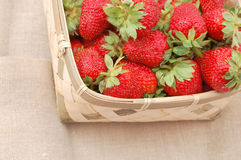 Strawberries. Many strawberries in the basket Royalty Free Stock Photos