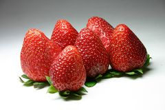 Strawberries. Close Up Royalty Free Stock Image