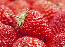Strawberries. Some sweet fresh red strawberries Stock Photo