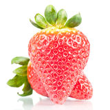 Strawberries. Over a white background Royalty Free Stock Images